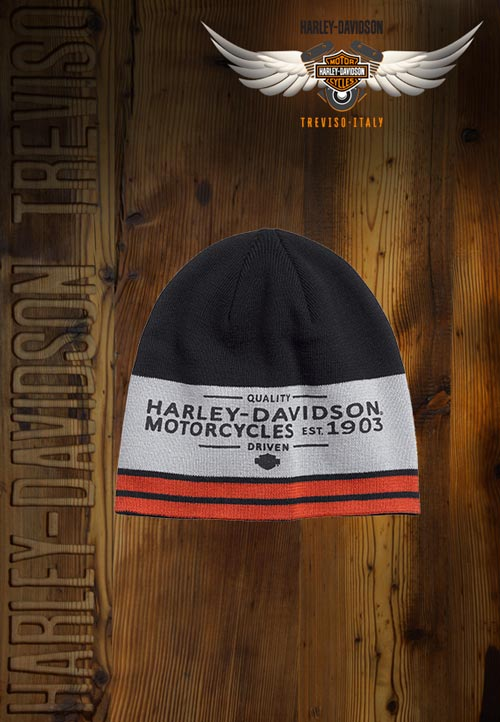 Berretto Harley-Davidson Colorblock Knit Hat