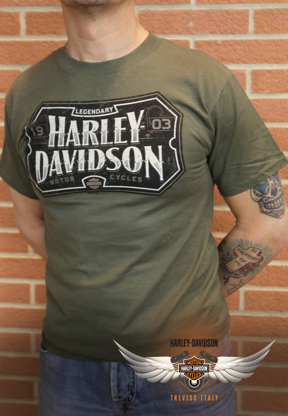 T-SHIRT HARLEY-DAVIDSON NAME PANEL